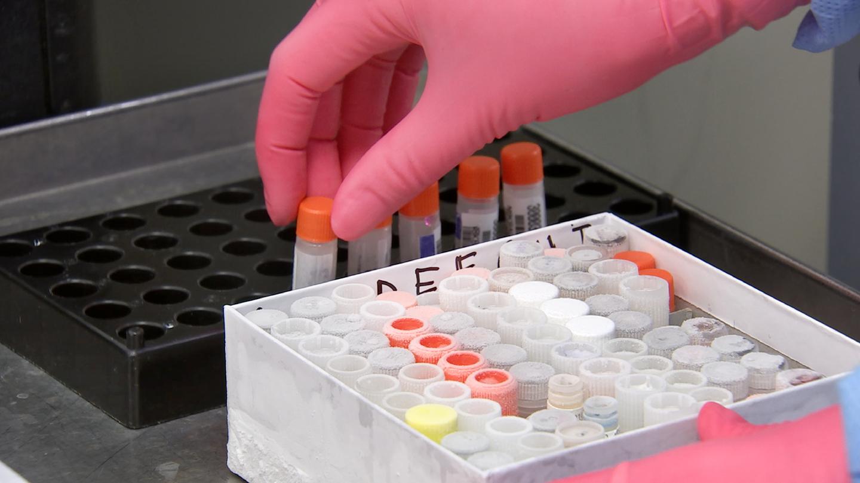 Vaccine Reevaluation