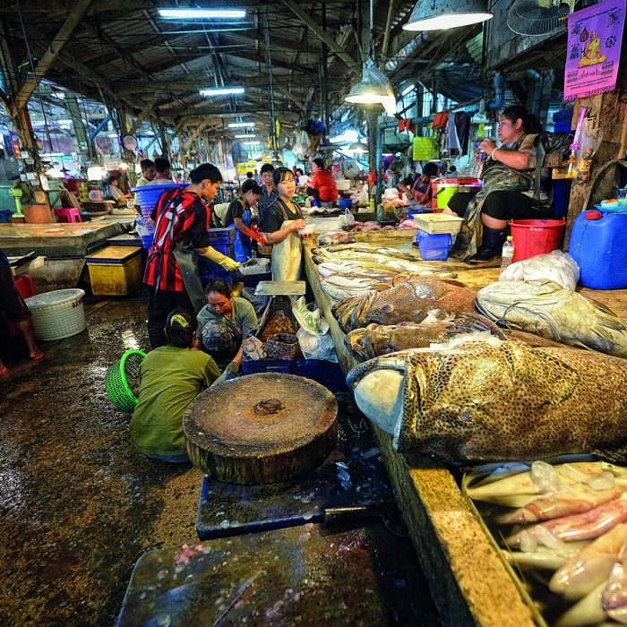 Samut Sakhon Central Shrimp Market