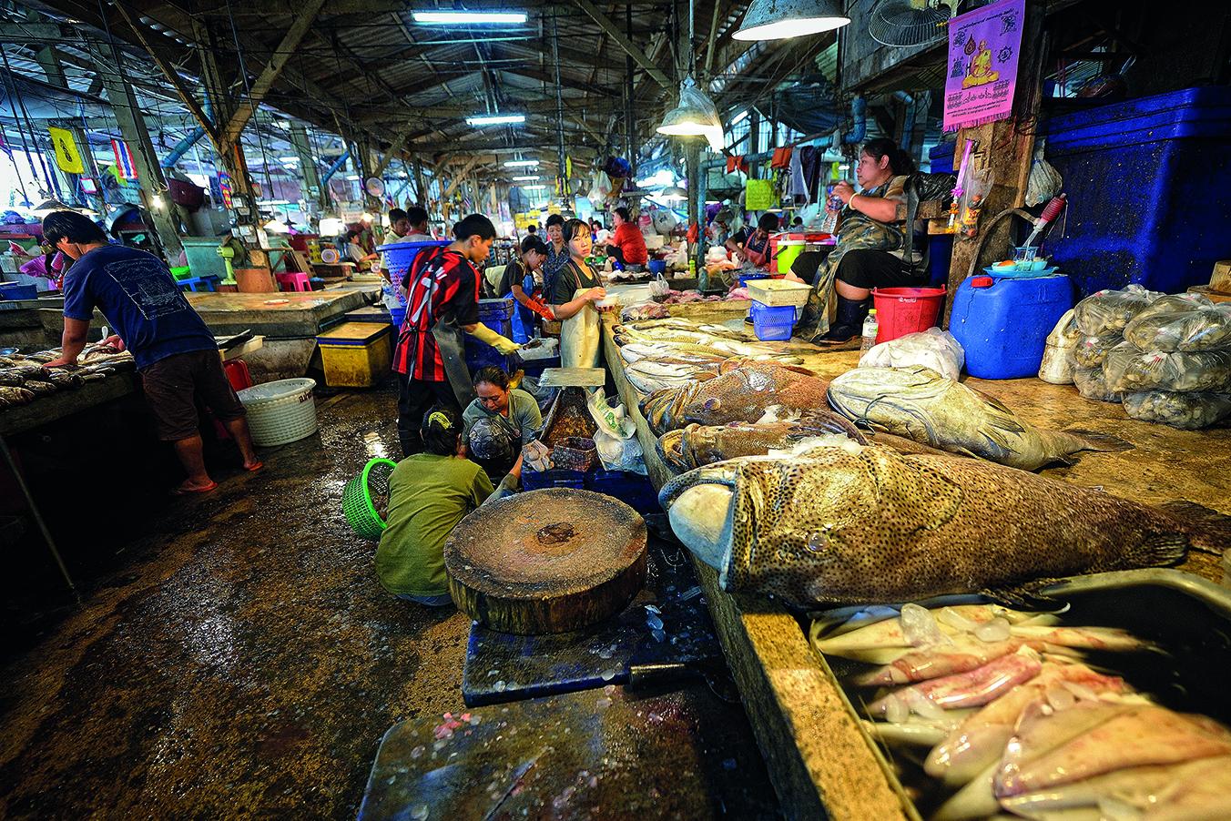 Samut Sakhon Central Shrimp Market