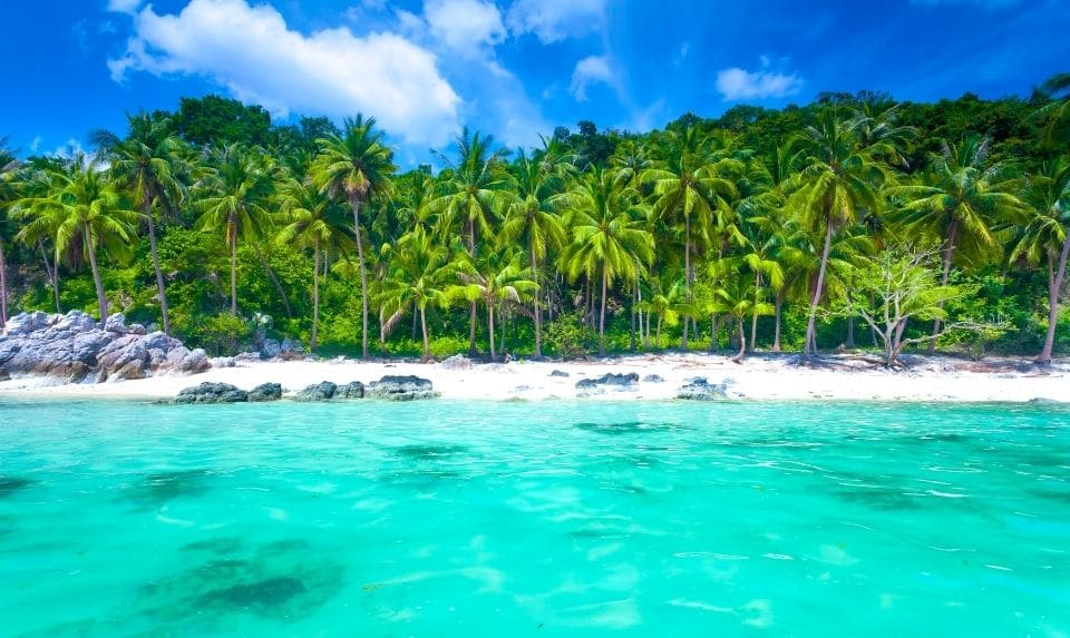 tropical sea and blue sky at Koh Samui