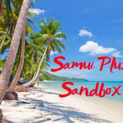 Samui Plus Have 11,000 Room Nights Reserved Until December